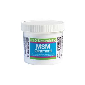 MSM Ointment salva 250 g NAF