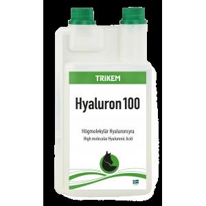 Hyaluron 100 1 liter Vimital