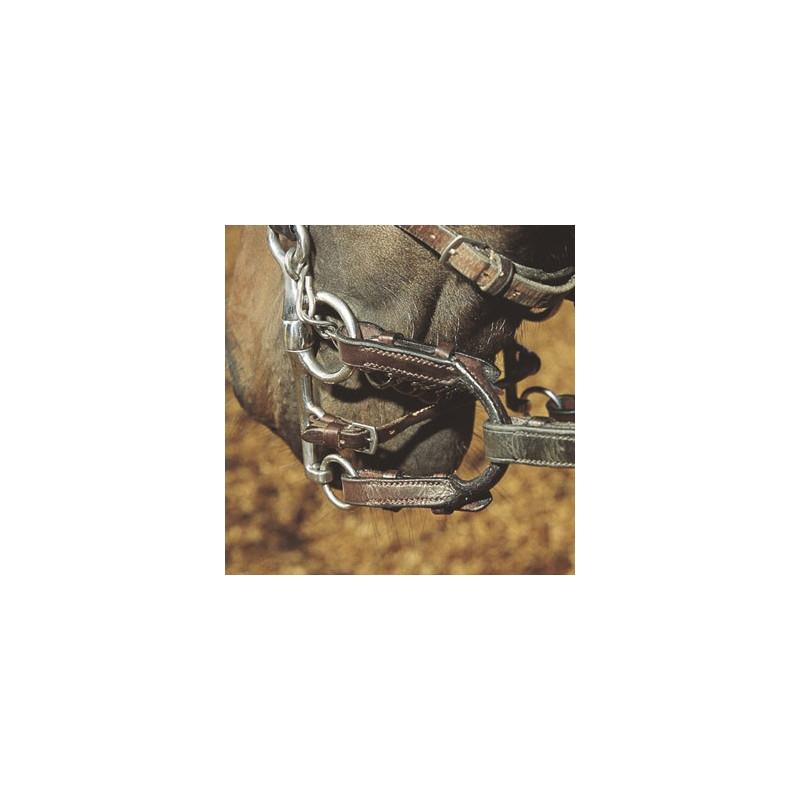 Pelham Tredelat Sweet Iron/Koppar