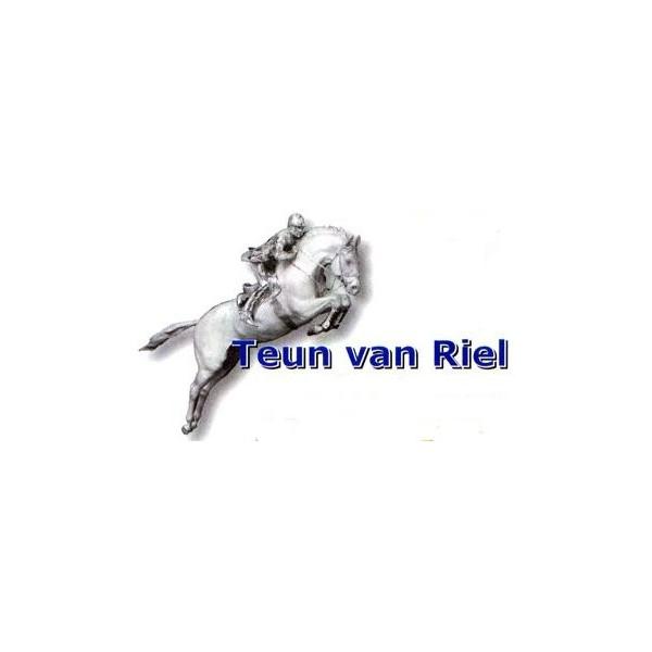 Teun van Riel